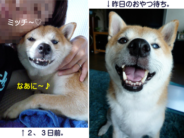4日ブログ10.jpg