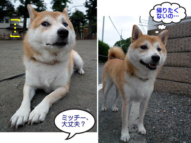 4日ブログ3.jpg