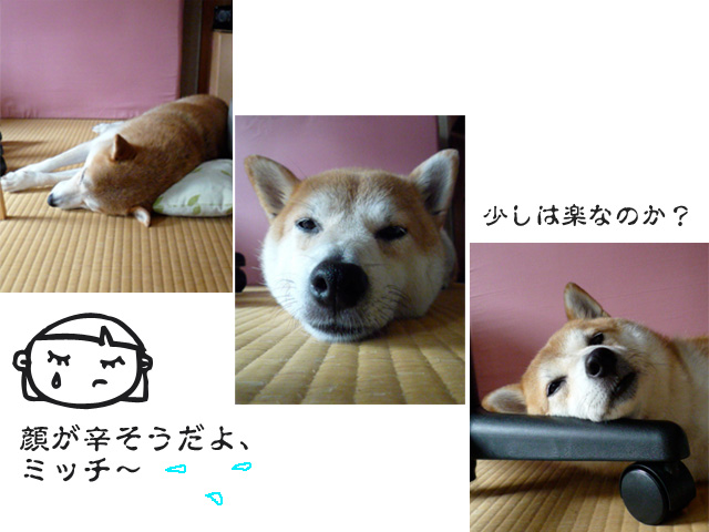 4日ブログ4.jpg