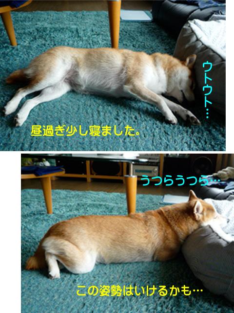 4日ブログ8.jpg