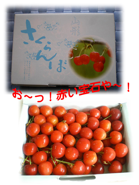 5日ブログ6.jpg
