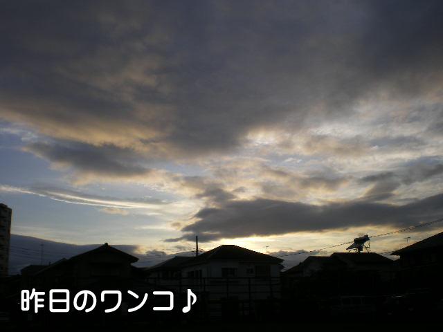 5日ブログ8.jpg