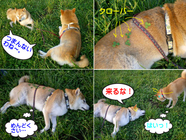 5日ブログ9.jpg