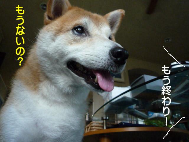 6日ブログ13.jpg
