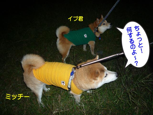 6日ブログ11.jpg