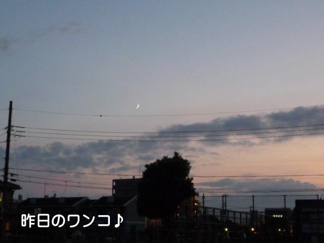 6日ブログ2.jpg