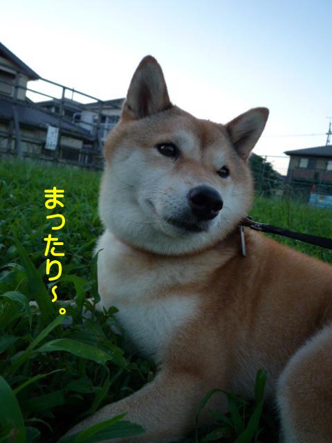 6日ブログ4.jpg