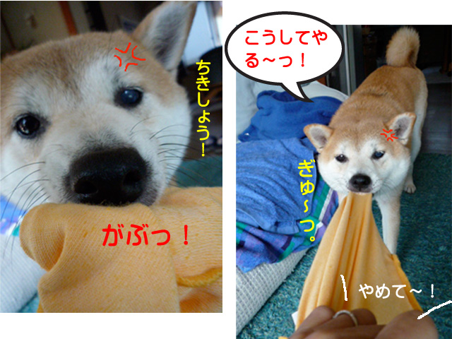 6日ブログ5.jpg