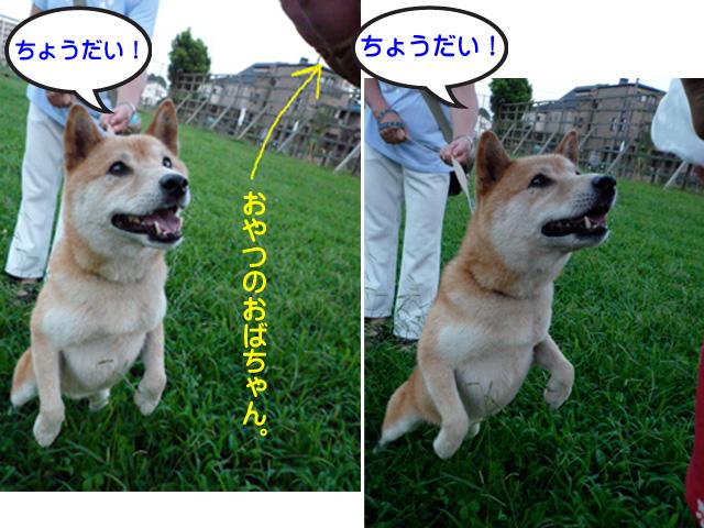 6日ブログ6.jpg