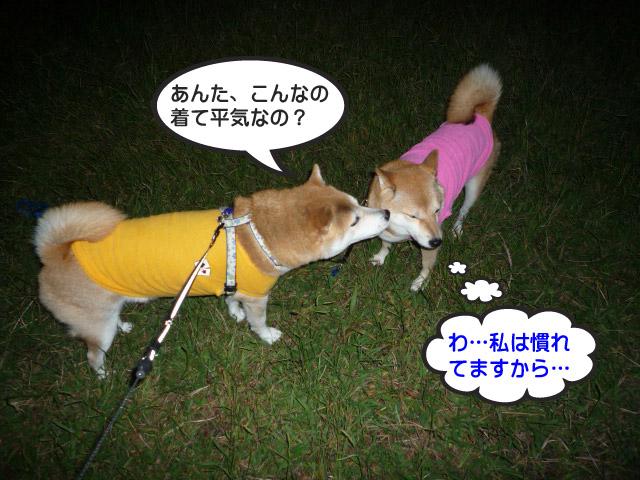 7日ブログ13.jpg