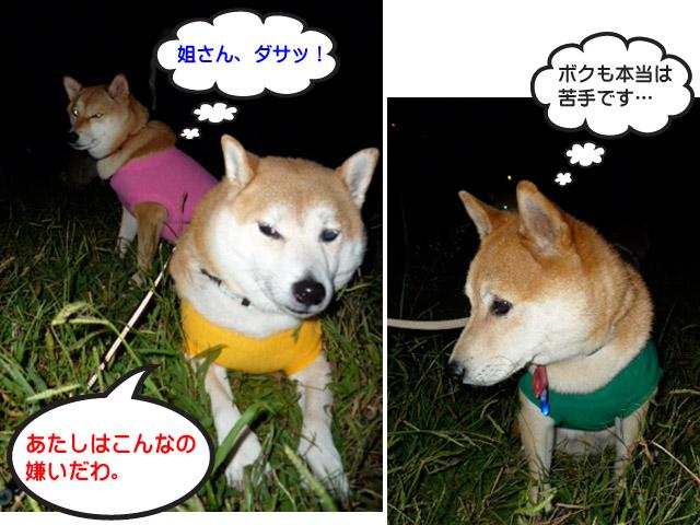 7日ブログ14.jpg