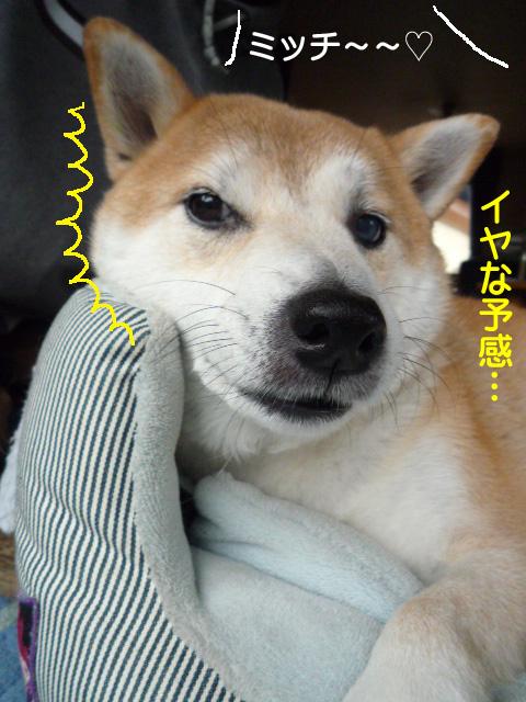 7日ブログ2.jpg