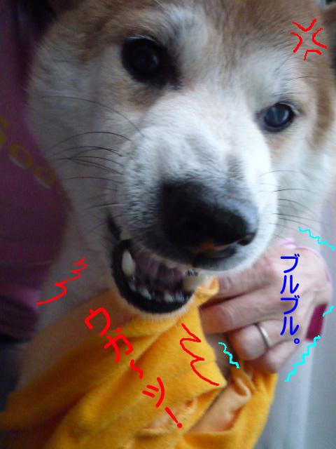 7日ブログ4.jpg