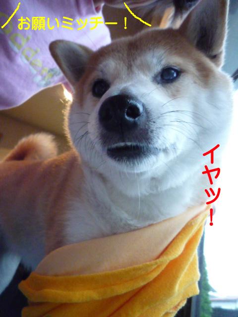 7日ブログ5.jpg