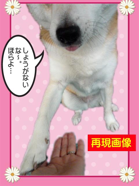 7日ブログ8.jpg
