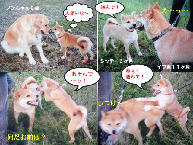 8日ブログ5.jpg