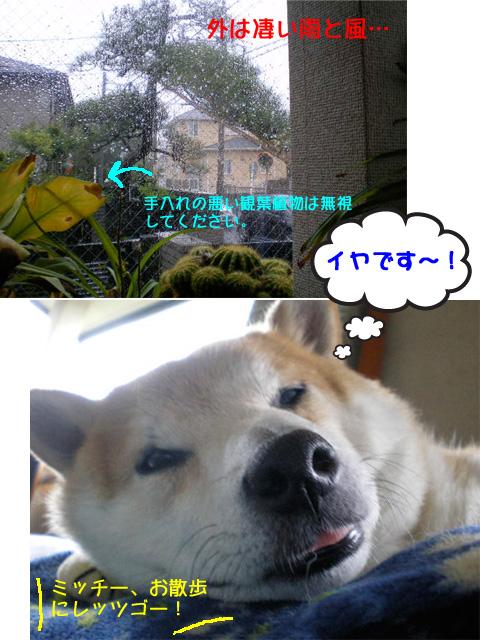 20日ブログ2.jpg