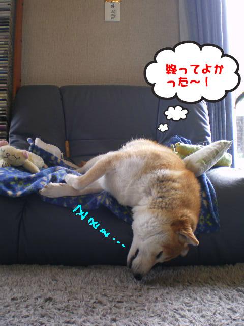 20日ブログ6.jpg