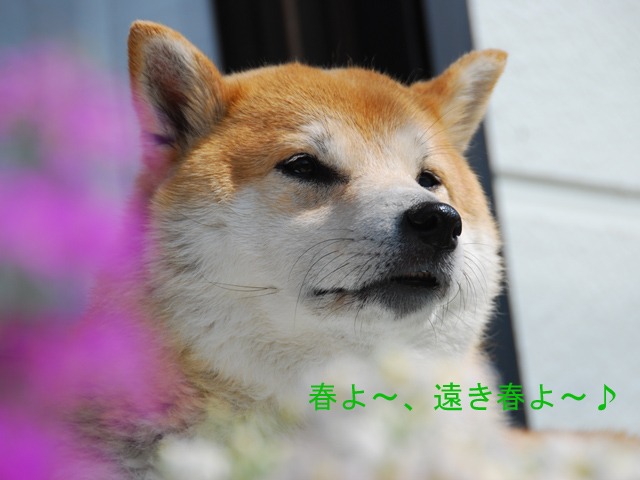 21日ブログ1.jpg