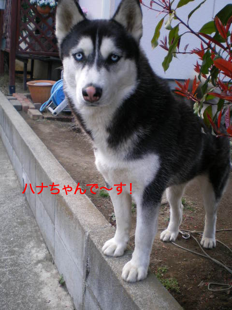 21日ブログ10.jpg