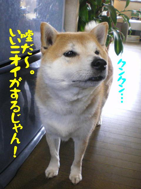 21日ブログ12.jpg
