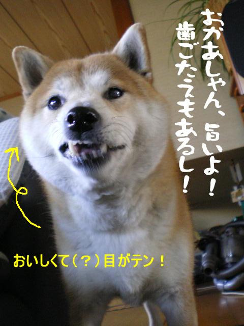 21日ブログ15.jpg