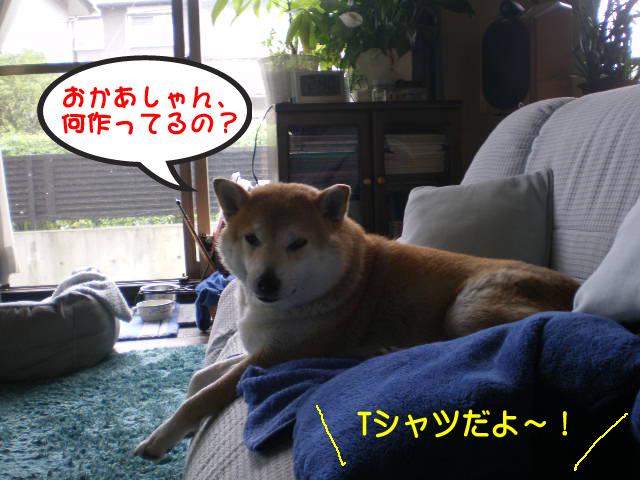 27日ブログ13.jpg