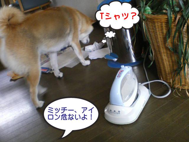 27日ブログ14.jpg