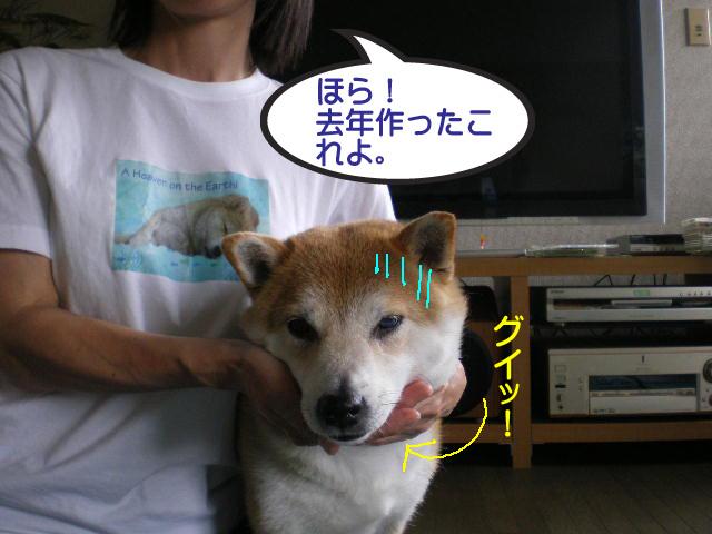 27日ブログ15.jpg
