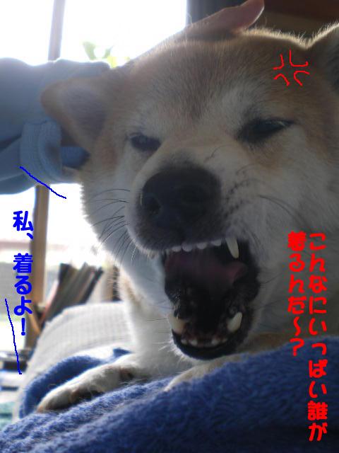 28日ブログ12.jpg