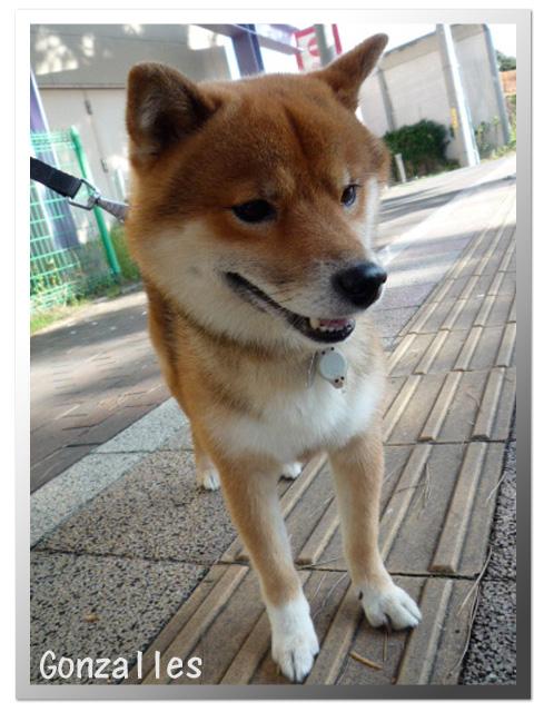 10日ブログ4.jpg
