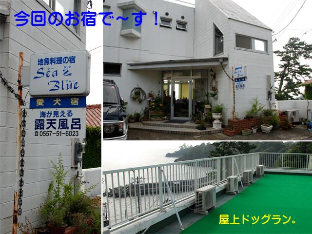 11日ブログ13.jpg