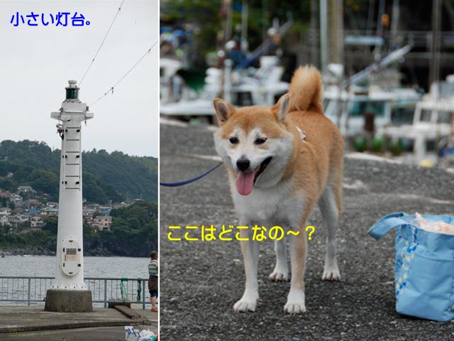 11日ブログ15.jpg