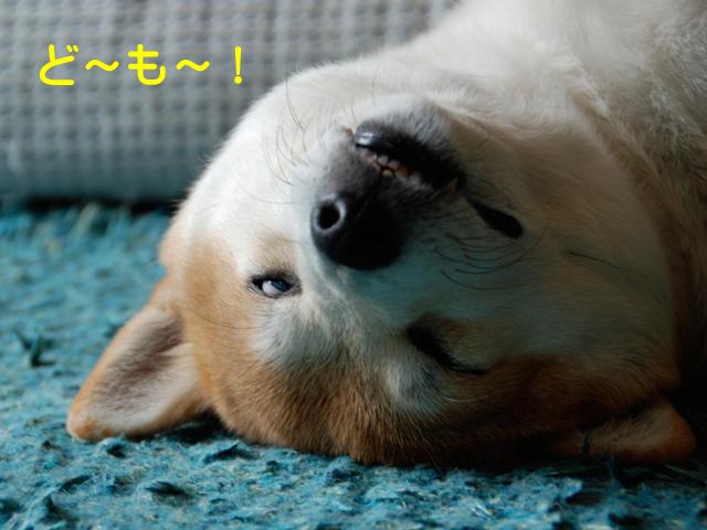 12日ブログ1.jpg