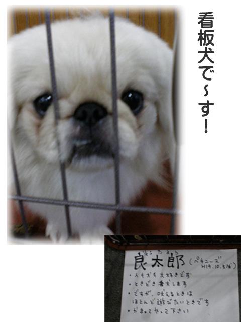 12日ブログ10.jpg