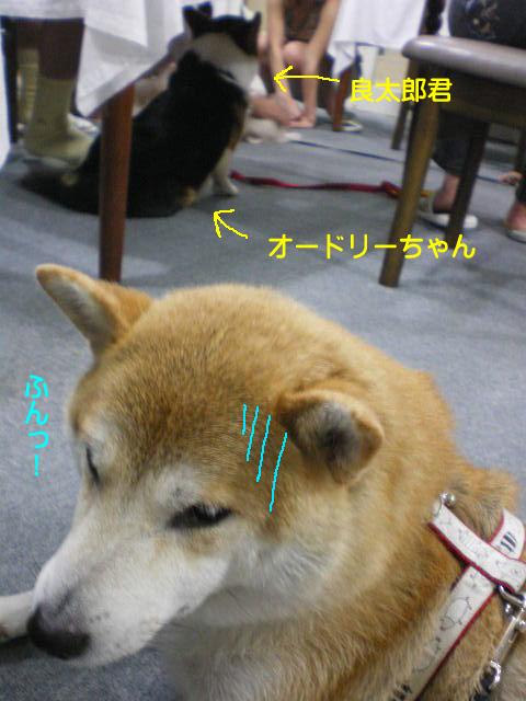 12日ブログ13.jpg