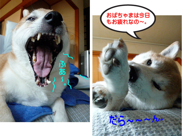 13日ブログ14.jpg