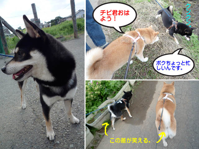 13日ブログ2.jpg