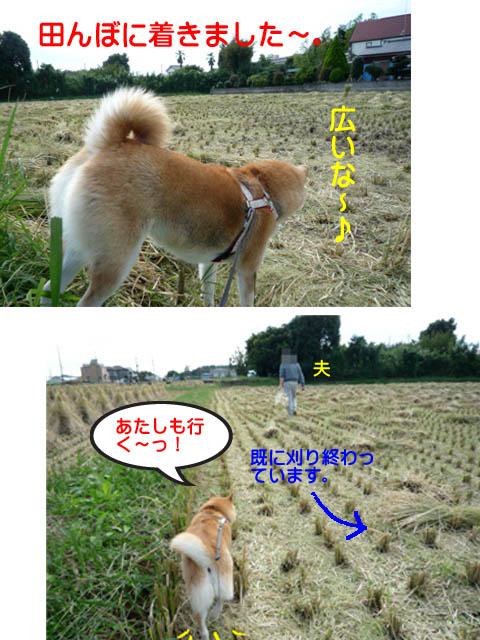 13日ブログ4.jpg