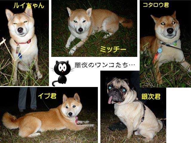 14日ブログ5.jpg