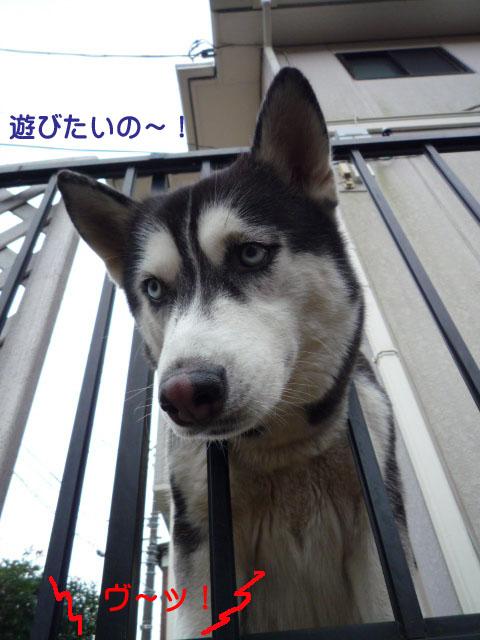 14日ブログ6.jpg