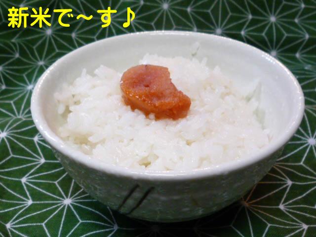 20日ブログ5.jpg