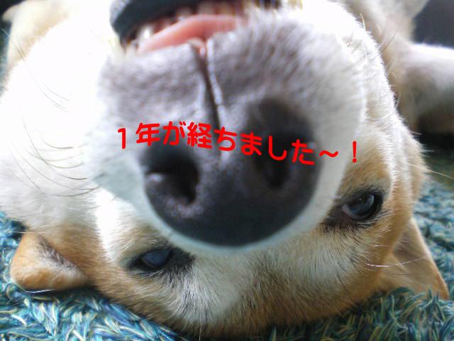 21日ブログ8.jpg
