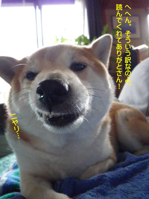 22日ブログ17.jpg