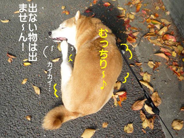 23日ブログ11.jpg