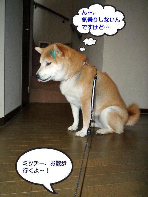 23日ブログ5.jpg