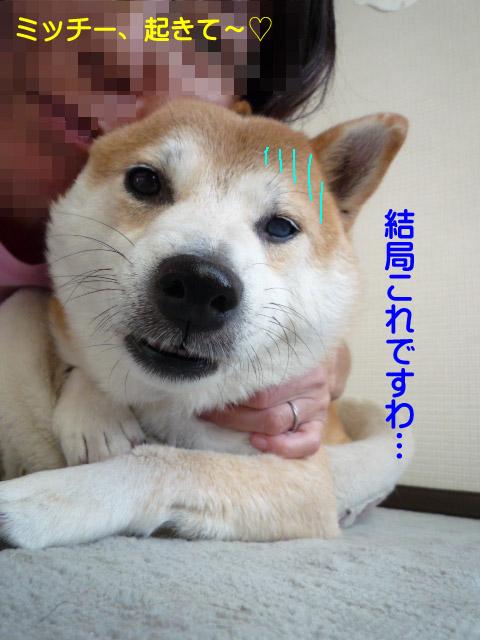 24日ブログ5.jpg