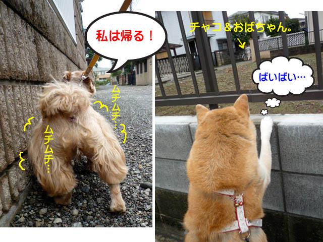 25日ブログ11.jpg