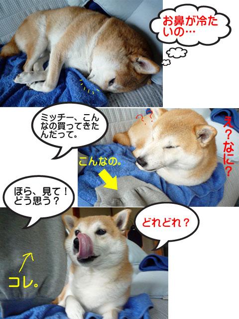 26日ブログ2.jpg