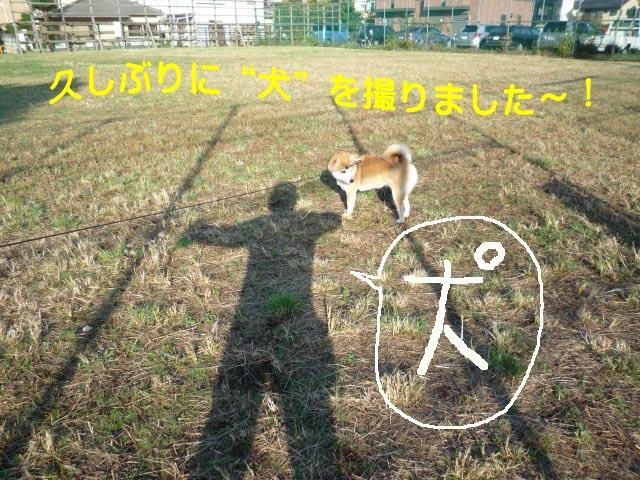 27日ブログ1.jpg